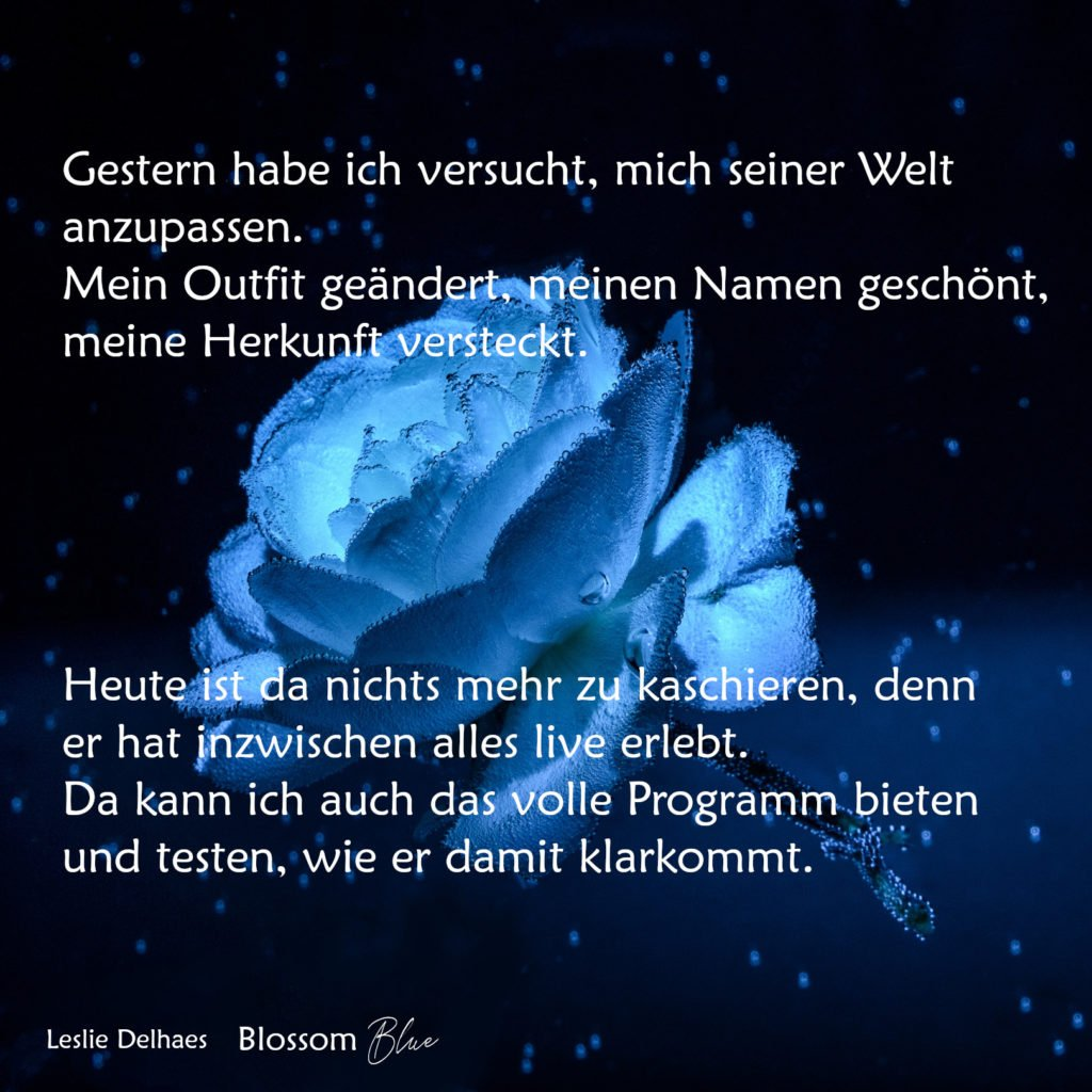 Blossom Blues Gedanken